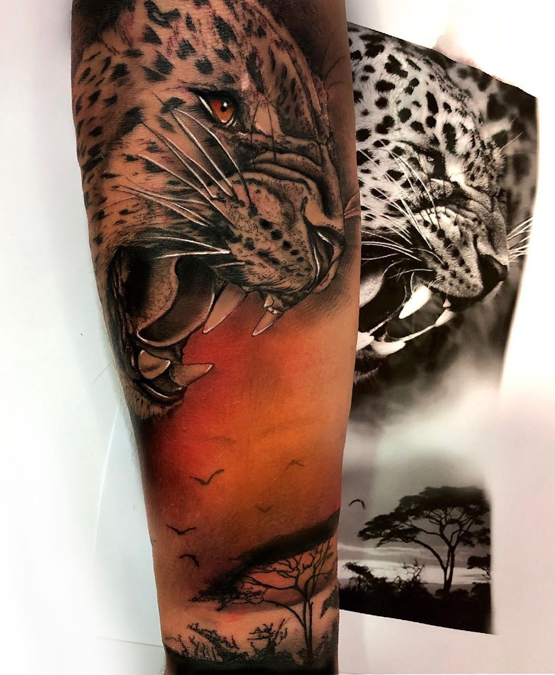followforfollow,berlin,followmeciudadreal,ciudadreal,tomelloso,almagro,puertollano,tatuajesenpuertollano,tatuajesendaimiel,ciudadrealtattoo,ciudadrealtatuajes,tatuajesciudadreal,follow,ciudadrealtatuajes,puertollano,tattooers,besttattooers,juantabasco,ciudadrealsetatua,ink,tatuajes,realismo,realistictattoo,ciudadrealtattoo,tatuajesenpuertollano,traditionaltattoos,castillalamancha